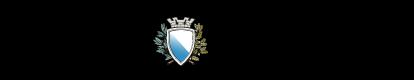 Logo Tagesanzeiger